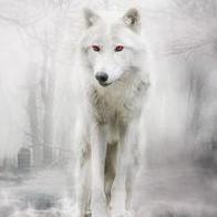 covert_direwolf