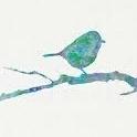 Bluerobin